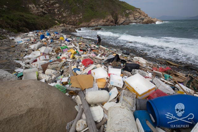 Lap Sap Wan beach in Hong Kong covered in trash